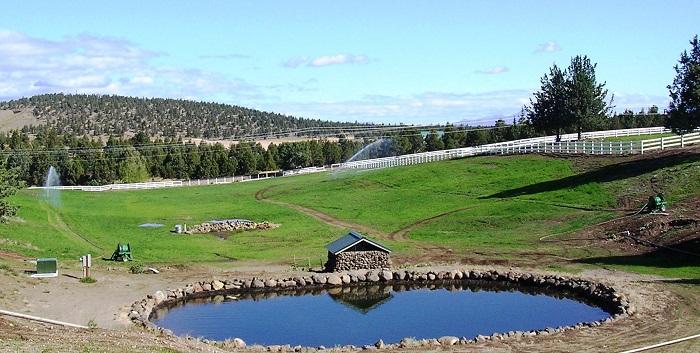 Waterreel irrigates pastures with Twin Max volume sprinkler