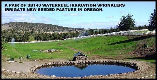 WATERREEL IRRIGATES PASTURE FROM LAKE.