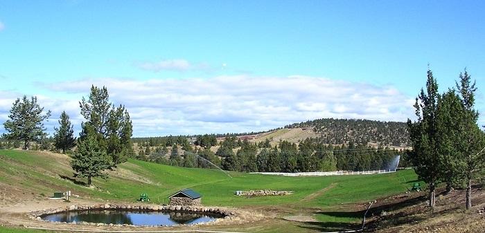 Oregon pasture in Bend, Oregon.