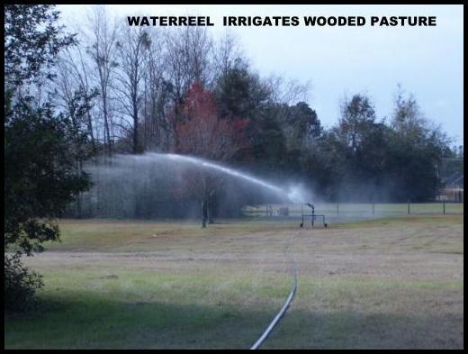 Waterreel traveling sprinklers irrigate pastures