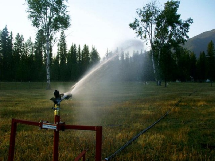 Wooded pasture irrigation with Smith Irrigation Equipment's traveling sprinklers.